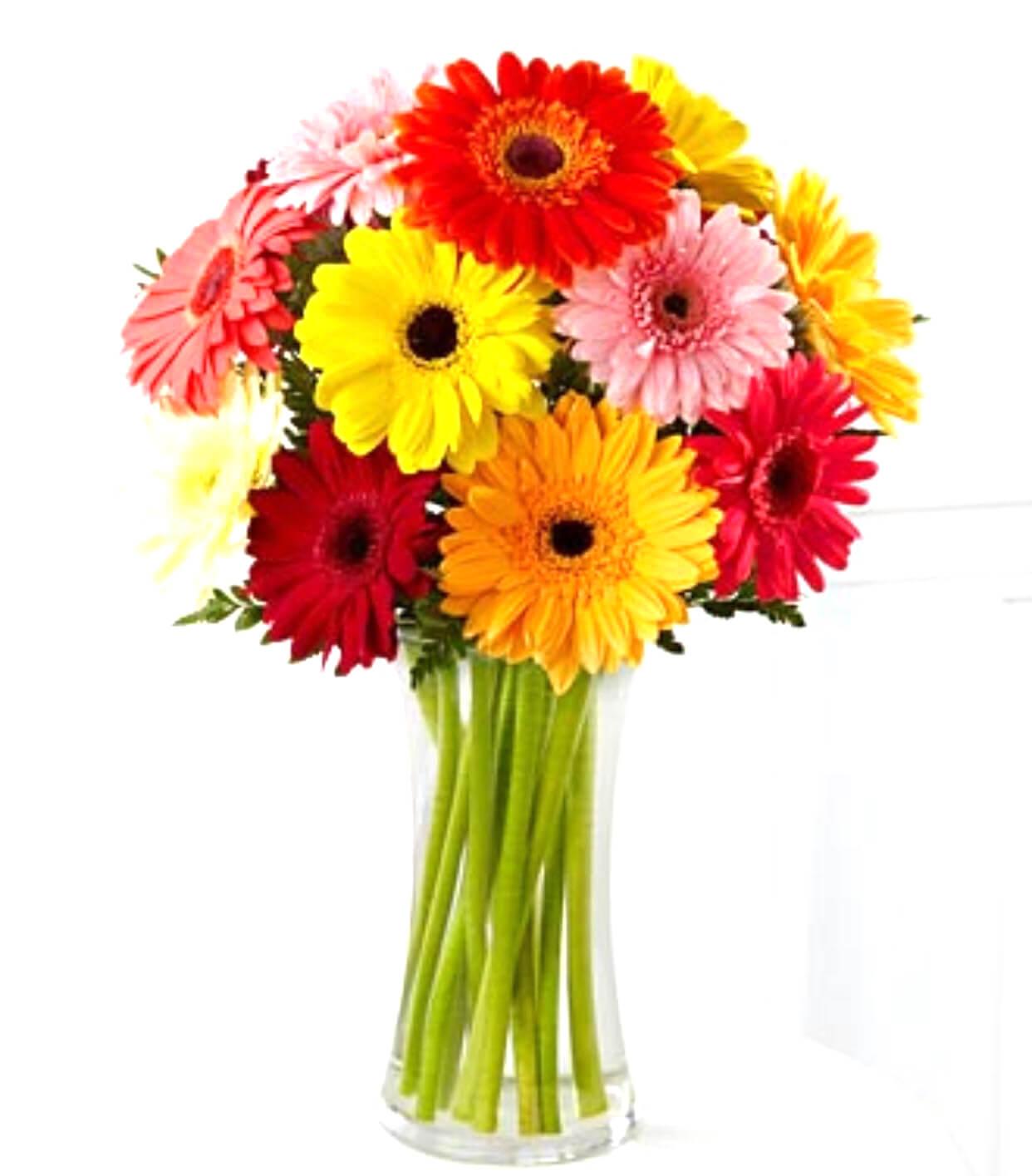 10mix-garbera-bouquet-with-vase