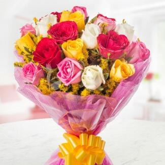 mix-rose-garden