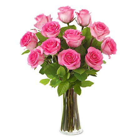 pink-rose-vase