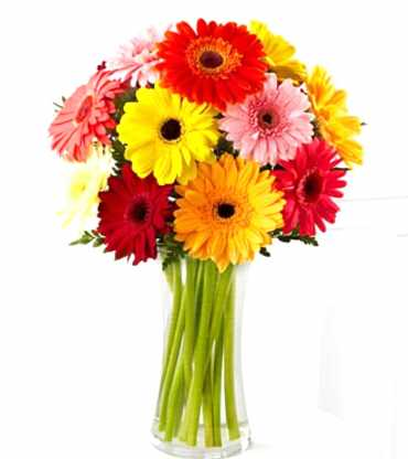 10mix-garbera-bouquet-with-vase