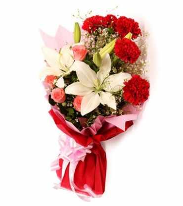 Carnation-Lily