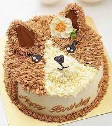 Cute Cat Face Chocolate Cake