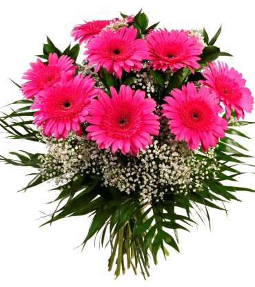 PINk-GARBERA-BOUQUET