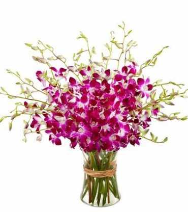 https://www.cakegift.in/pink-orchid-vase