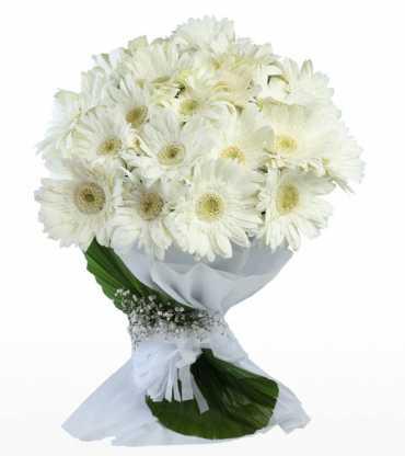 White-Gerberas-Bouquet