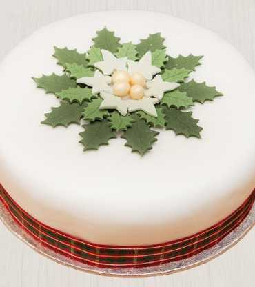 starry delight-christmas cake