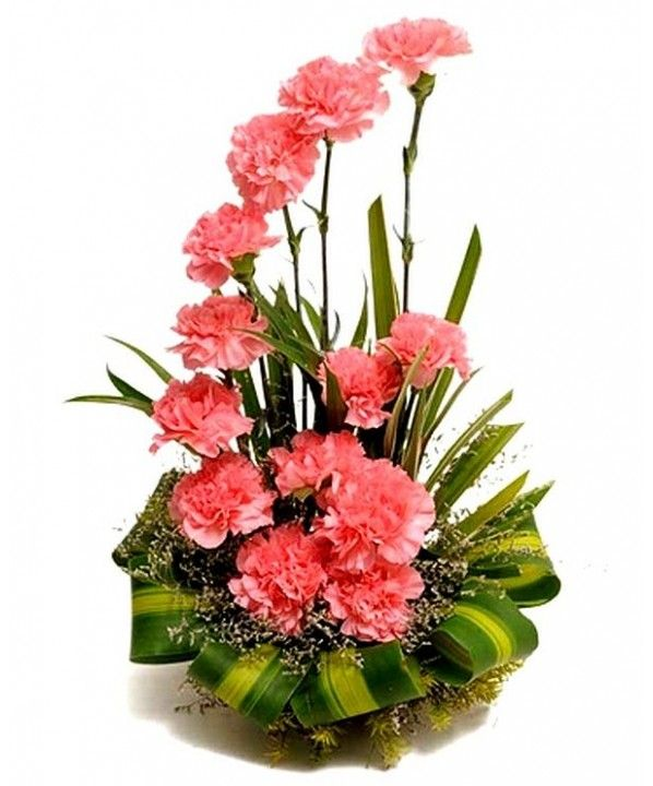 pink-carnation-arrangement