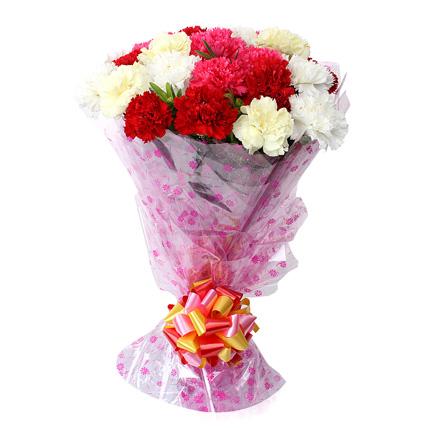 mix-carnation
